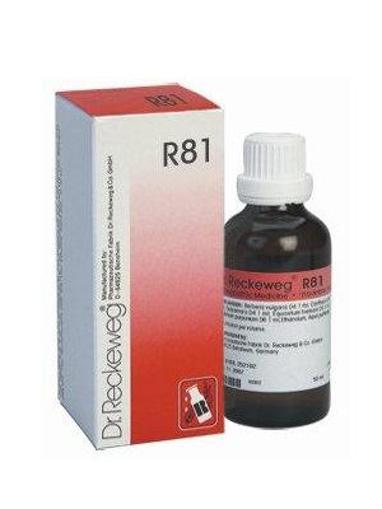 תמונה של R81 DROPS - DR. RECKEWEG