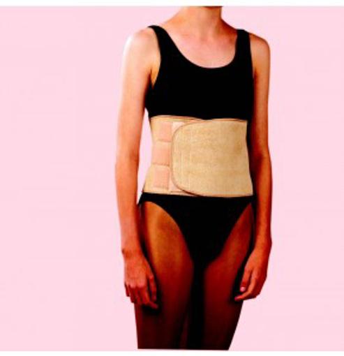 תמונה של חגורת גב יפנית אסא | ASSA Back Support