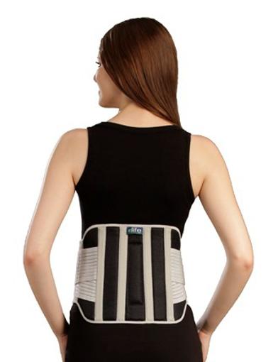 תמונה של חגורת גב עם חיזוקים וסגירה כפולה וכרית - elife